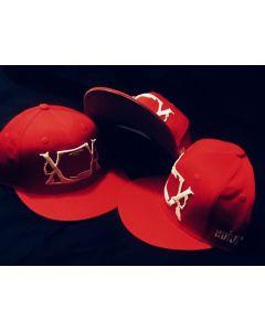 20Large - SnapBack Hat